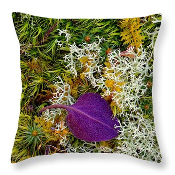 Purple Leaf Throw Pillow by Robert Charity