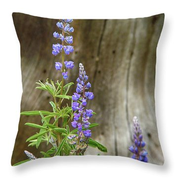 Purple Lupine Throw Pillow