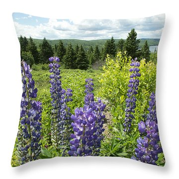 Throw Pillow featuring the photograph Purple Lupines by Paul Miller