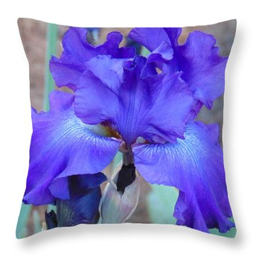 Purple Majesty Throw Pillow by Charlotte Gray