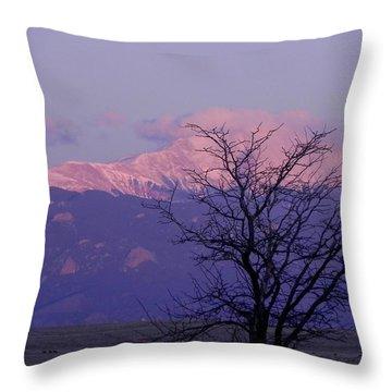 Purple Mountain Majesty Throw Pillow