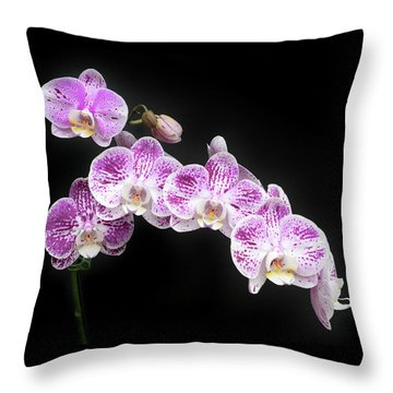 Throw Pillow featuring the photograph Purple On White On Black by Denise Bird