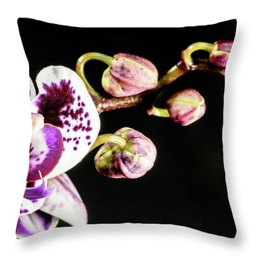 Purple Orchid Reaching Out Throw Pillow