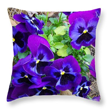 Throw Pillow featuring the photograph Purple Pansies by Sandi OReilly