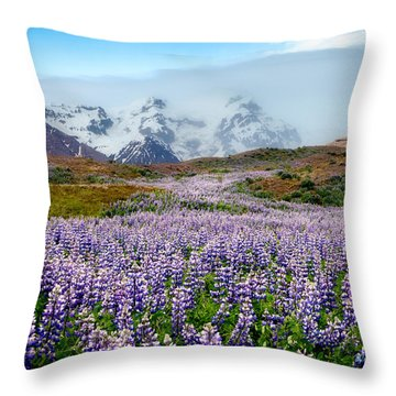 Purple Pathway Throw Pillow by William Beuther