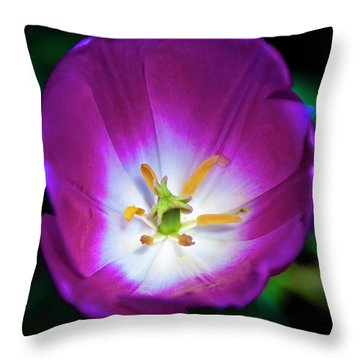 Purple Perfection Throw Pillow by Tamyra Ayles