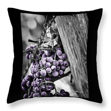 Purple Punch Throw Pillow