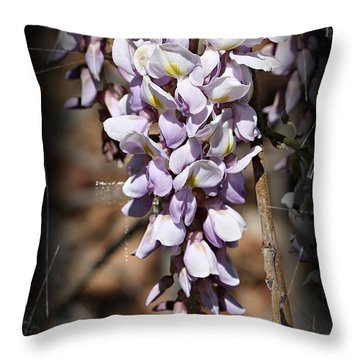 Throw Pillow featuring the photograph Purple Rain- Wisteria- Fine Art by KayeCee Spain