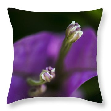 Throw Pillow featuring the photograph Purple Rest Flower by Paula Porterfield-Izzo