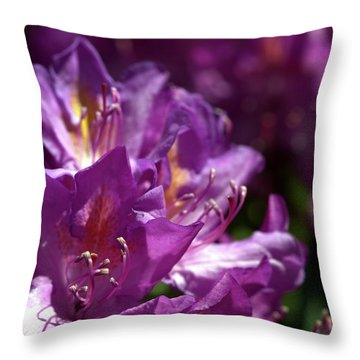 Purple Rhododendron Throw Pillow by Stephen Melia