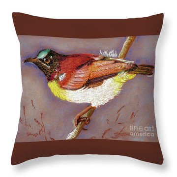 Purple Rumped Sunbird Throw Pillow