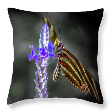 Purple Sage Snack Throw Pillow