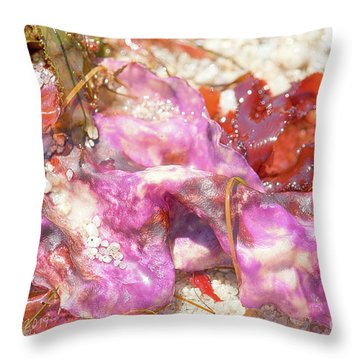 Purple Seaweed In Pacific Grove Throw Pillow