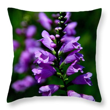 Throw Pillow featuring the photograph Purple Skullcap Bloom by Barbara Bowen