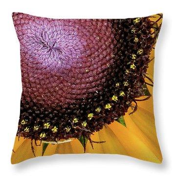 Purple Spirals Throw Pillow