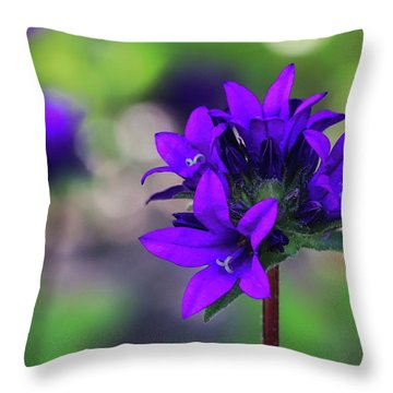 Throw Pillow featuring the photograph Purple Spring Flower by Cristina Stefan