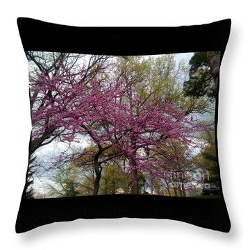 Purple Spring Trees Throw Pillow