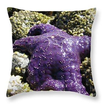 Purple Star Fish Throw Pillow