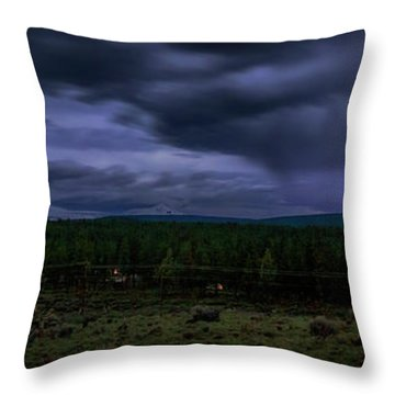 Throw Pillow featuring the photograph Purple Strikes by Cat Connor