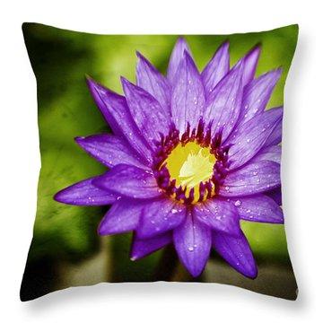 Purple Sunrise Throw Pillow by Scott Pellegrin