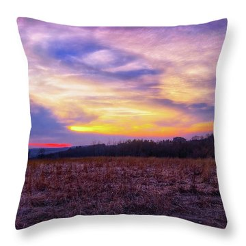 Throw Pillow featuring the photograph Purple Sunset At Retzer Nature Center by Jennifer Rondinelli Reilly - Fine Art Photography