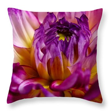 Purple Sunset Flower 2 Throw Pillow by Marianne Dow