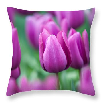 Purple Tulips Of Keukenhof Throw Pillow