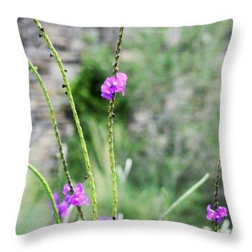 Throw Pillow featuring the photograph Purple Vebena by James Fannin