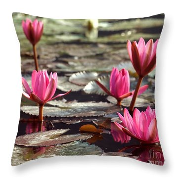 Purple Water Lillies Throw Pillow by Yali Shi