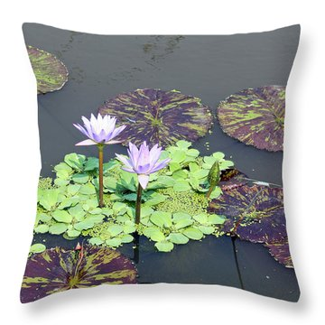 Throw Pillow featuring the photograph Purple Water Lily by Ellen Tully