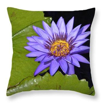 Purple Waterlily Wide Open Throw Pillow