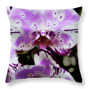 Purple And White Orchid Throw Pillow