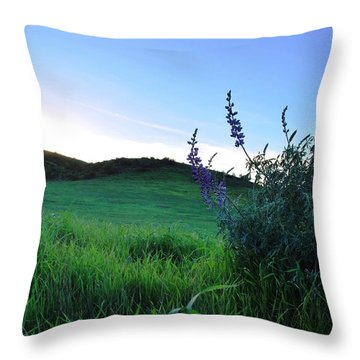 Throw Pillow featuring the photograph Purple Wildflowers In Beautiful Green Pastures by Matt Harang