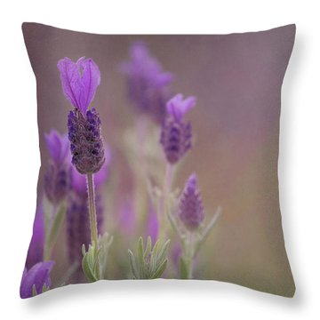 Purple Wings Throw Pillow