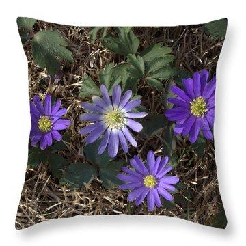 Purple Yard Flowers Throw Pillow by Liz Allyn