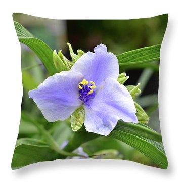 Spiderwort Throw Pillow