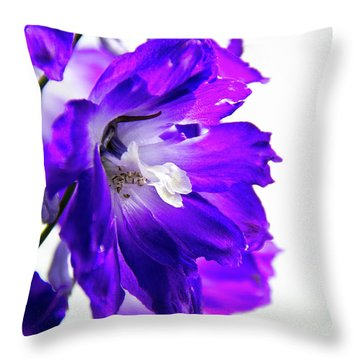 Purpled Throw Pillow