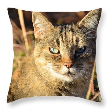 Purr-fect Kitty Cat Friend Throw Pillow