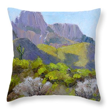 Pusch Ridge II Throw Pillow