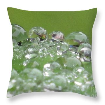 Morning Drops Throw Pillow by Kim Tran