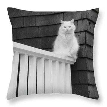 Pussy Cat Throw Pillow