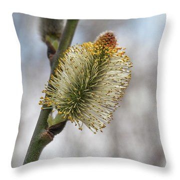 Pussy Willow Catkins 2 Throw Pillow