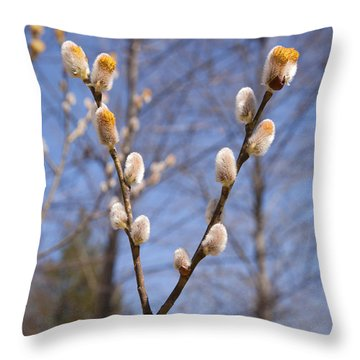 Pussy Willow Throw Pillow by Erin Paul Donovan