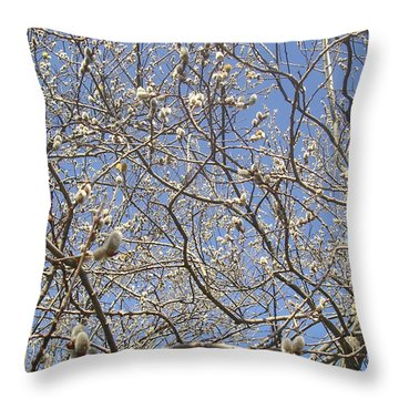 Pussywillows Bursting To Life Throw Pillow
