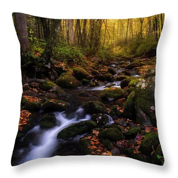 Put A Fork In It Throw Pillow by Bjorn Burton