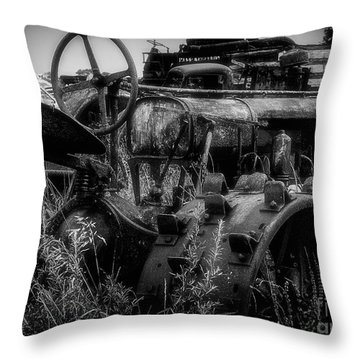 Put Out To Pasture  Throw Pillow