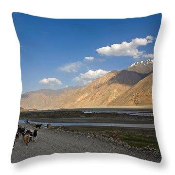 Pyandzh Valley Throw Pillow by Konstantin Dikovsky
