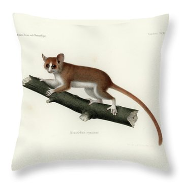 Pygmy Mouse Lemur Throw Pillow