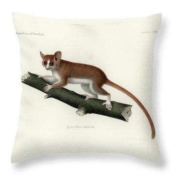 Pygmy Mouse Lemur Throw Pillow