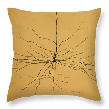 Pyramidal Cell In Cerebral Cortex, Cajal Throw Pillow